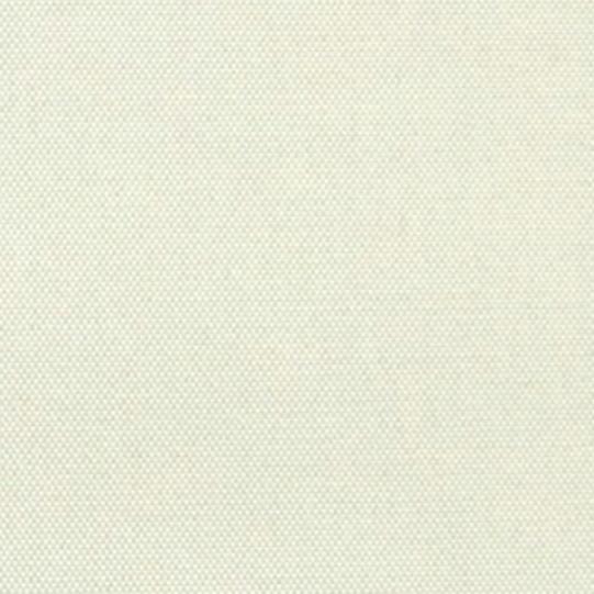 Ecru Fabric